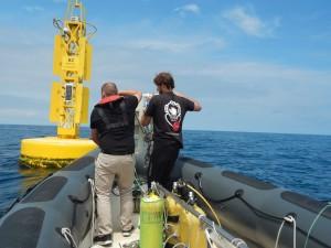 Oceanic News IK4 site3